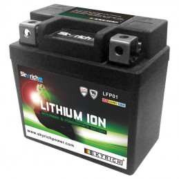 Batterie SKYRICH Lithium Ion LFP01