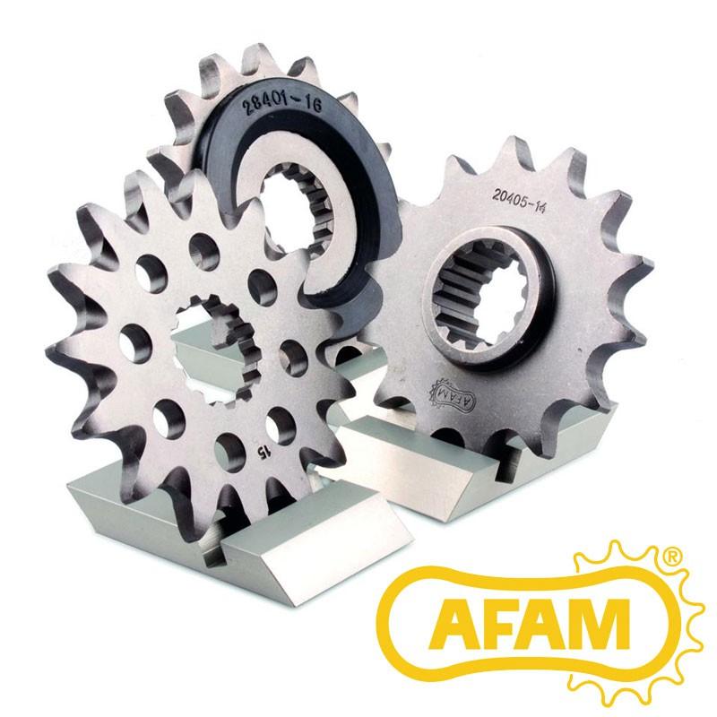 Pignon AFAM 450 DS
